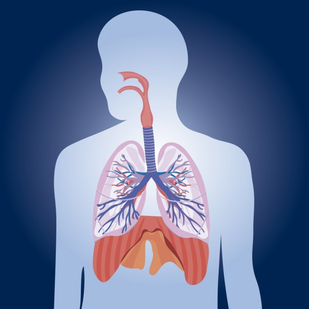 Alert! Keep your lungs Healthy in Summer!